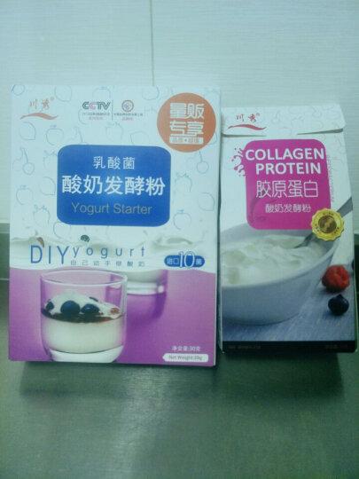 安琪酸奶发酵菌10菌 益生菌粉自制酸奶发酵剂1g*8袋 晒单图