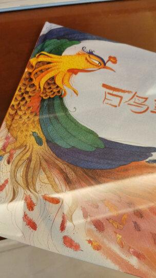 喜鹊信使(中国红系列) 晒单图