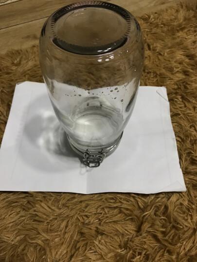 欧嘉迪 玻璃罐子密封罐小玻璃瓶厨房储物罐 康雅居4(1500ml) 晒单图