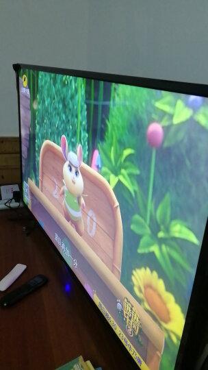 夏新(AMOI) 55A 窄边框55英寸高清蓝光LED平板液晶电视机大尺寸彩电客厅普通电视 晒单图