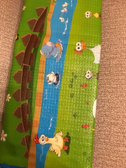 贝博氏爬行垫WTKT076贝乐宝运动会双面宝宝爬行垫爬爬垫泡沫防滑环保地垫游戏毯(2米*2米) 晒单图