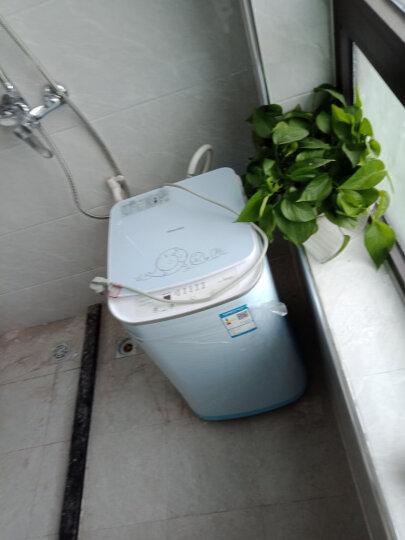 海信波轮洗衣机全自动 3公斤小型母婴迷你洗衣机 高温杀菌 宝宝儿童婴儿洗 XQB30-M108LH(BL) 晒单图