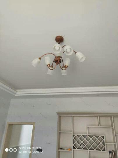 飞利浦(PHILIPS)吊灯 客厅餐厅卧室欧式美式铁艺北欧简欧创意艺术复古吊灯灯具套餐 简美 柏郁9头吊灯 玻璃灯罩(送4.8W暖黄光光源) 晒单图