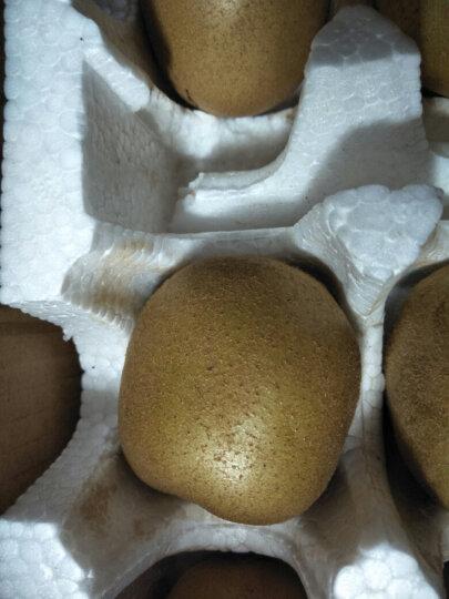 第二件5.9元 蒲江黄心猕猴桃 6枚 标果70-90g 新鲜黄心奇异果 晒单图