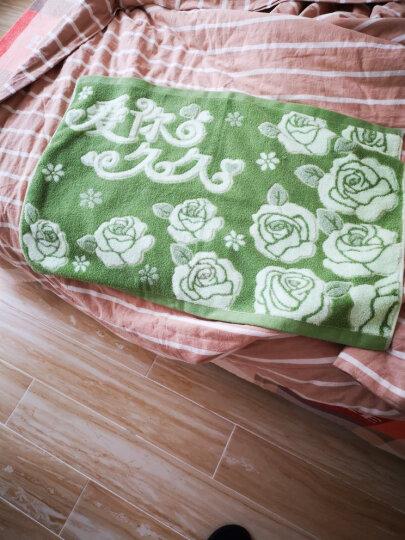 沐凡 枕巾 纯棉加厚 一对2条装柔软透气全棉卡通情侣枕头巾礼品 网格苹果驼色一对 50*75cm 晒单图