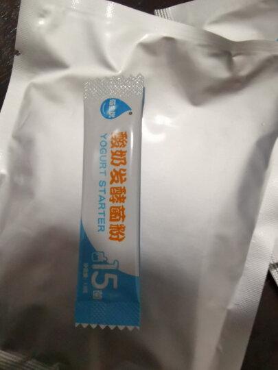 佰生优 自制乳酸菌饮料发酵粉 64克 活菌型乳酸菌饮料 活性益生菌粉 晒单图