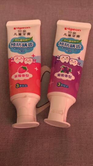 贝亲 (Pigeon) 牙刷 婴儿牙刷 婴儿训练牙刷 柔软刷毛 2阶段训练牙刷 黄色 8-12月 11535 晒单图
