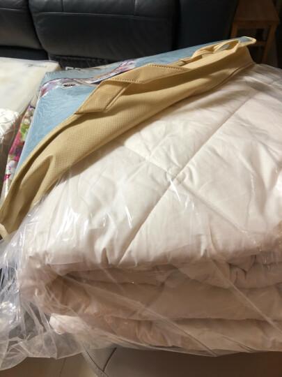 富安娜家纺 100%澳洲羊毛全棉被子单人冬天加厚纯棉春秋被褥双人保暖冬被 澳洲羊毛春秋被(纯棉防钻毛) 1.2床(152*210cm) 晒单图