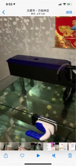 NaturalColor鱼缸专用过滤水族箱过滤材料 竹炭+吸氨石 除味 8-12mm NC-63 500g 晒单图