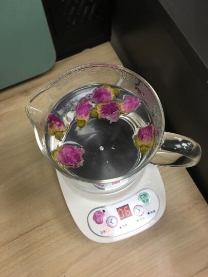 小熊(Bear)0.4L迷你养生杯养生壶 热牛奶电热杯煮花茶壶烧水壶电热水壶配玻璃滤网YSH-A03C5 晒单图