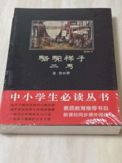 水浒传 黑皮阅读 统编语文教材(九年级上)必读 入选教育部中小学生阅读指导目录(2020年版) 晒单图