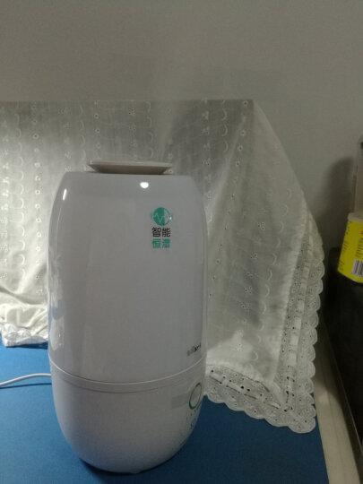 小熊(Bear)加湿器卧室3升家用静音迷你香薰机 孕婴可用 办公室空气加湿 智能恒湿JSQ-A30Y1 晒单图