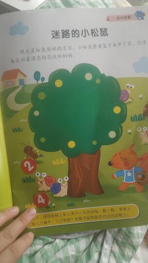 邦臣小红花·动脑贴贴画(2-5岁 套装共12册) 晒单图