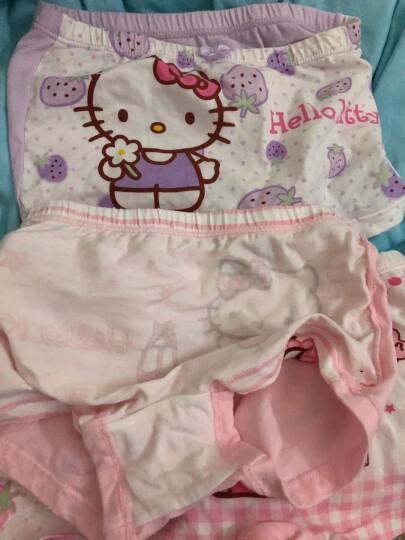 凯蒂猫(HELLO KITTY)儿童内裤女童四角平角小孩纯棉内裤6条装 KTN138  120码 晒单图
