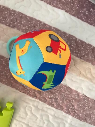 费雪(Fisher Price)宝宝健身球 儿童玩具球套装(六球混装 赠打气筒)F0917 晒单图