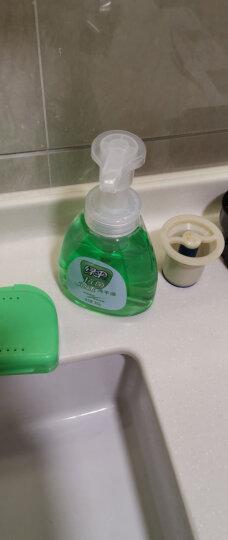 绿伞 抗菌泡沫洗手液300g/瓶(悠然海风) 滋润护肤易冲洗 晒单图