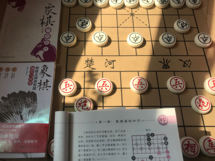 象棋中级教程(第二版) 晒单图