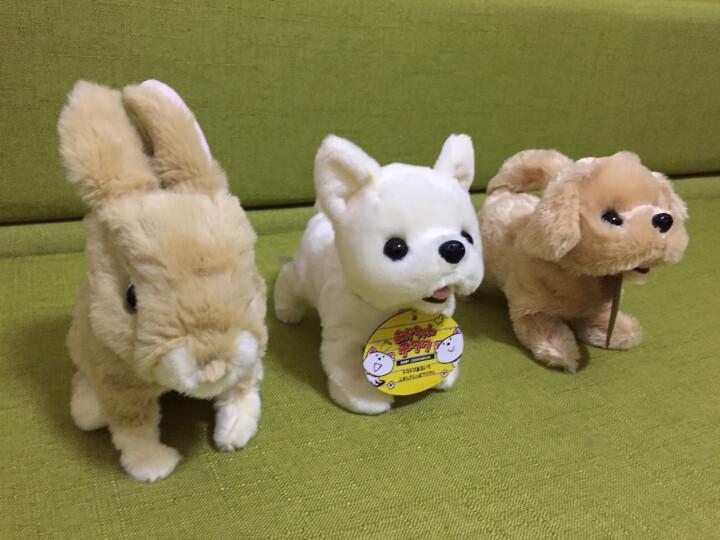 IWAYA(I)电动小狗毛绒宠物动物玩具 电动猫 儿童会走会叫小猫电动男孩女孩玩具狗 声控迷你小狗-西班牙猎犬 晒单图