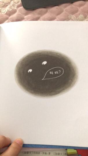 安儿乐ANERLE扭扭拉拉裤女款L22片(9-14kg)婴儿干爽透气非纸尿裤 晒单图