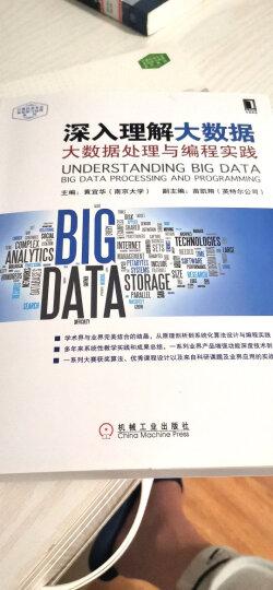 深入理解大数据:大数据处理与编程实践 晒单图