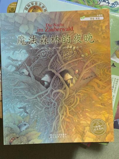 魔法森林的夜晚 幼儿图书 绘本 早教书 儿童书籍 晒单图