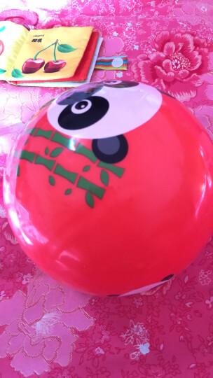 费雪(Fisher Price) 儿童玩具球 宝宝小皮球拍拍球22cm(红色 赠送打气筒)F0516H4儿童礼物 晒单图