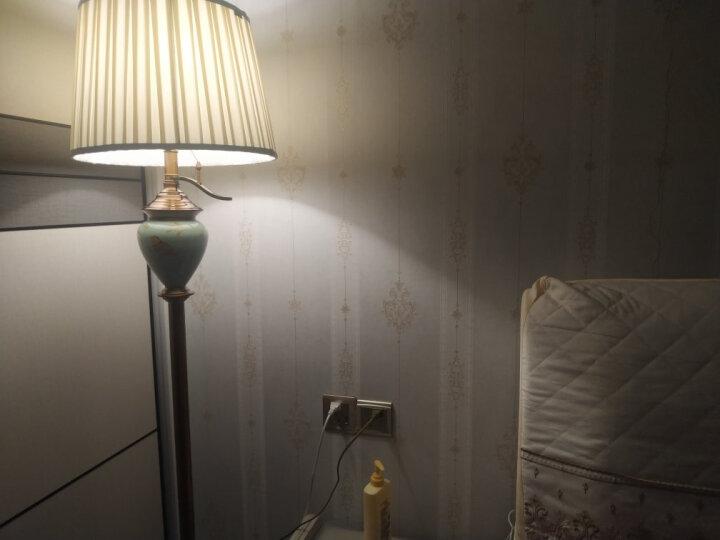 【登对】美式落地灯 客厅沙发卧室床头书房欧式镀全铜手绘鸟LED立式装饰落地台灯灯具 天蓝色 杠杆开关【6w暖光LED】 晒单图