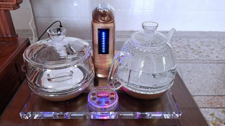 金灶(KAMJOVE) 电热茶炉电茶壶 全智能自动上水电茶炉 玻璃泡茶具煮水电茶炉家用 B8 香槟金 晒单图