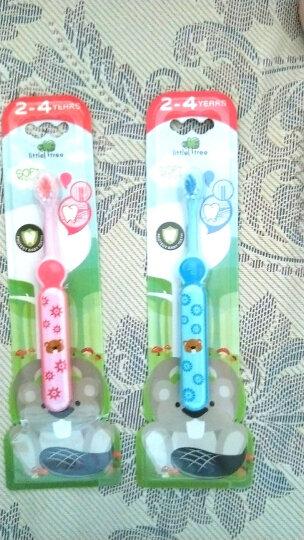 小树苗 儿童牙膏牙刷套装G 婴幼儿草莓牙膏70g+宝宝牙刷粉色 无色素无氟可吞咽 适合2-4岁 特护系列 晒单图