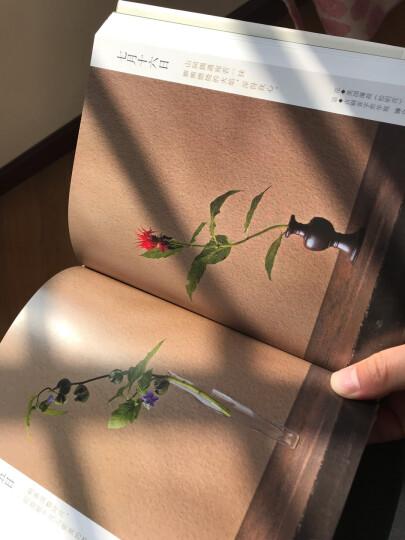 四季花传书 晒单图