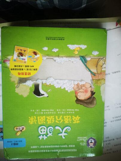大猫英语分级阅读六级2 Big Cat(适合小学四、五年级 读物7册+阅读指导1册+MP3光盘1张 点读版) 晒单图