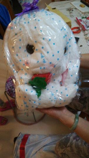 金贝恩(kinbern) 可爱兔子抱枕小白兔毛绒玩具垂耳兔公仔布娃娃玩偶节日礼物女生 棕色奶瓶 45厘米 晒单图