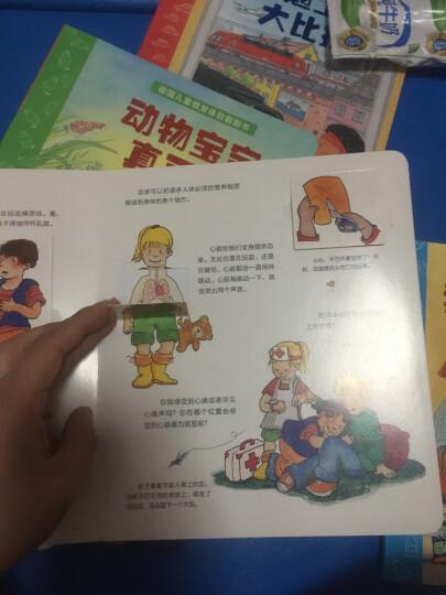 乐易学·德国儿童情景体验翻翻书:我从哪里来 晒单图