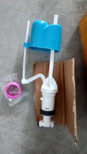菲时达(Feishida) 通用老式抽水马桶坐座便水箱配件浮球进水阀排水阀冲水水箱按钮 连体29cm排水阀 晒单图