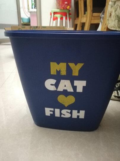 海洋之星鲭鱼猫粮无谷粮成幼猫美毛 1.5kg保质期至18年10月22号 晒单图