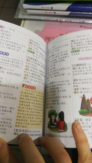 小学生多功能成语词典(彩图版)新课标学生专用辞书工具书 开心辞书 晒单图
