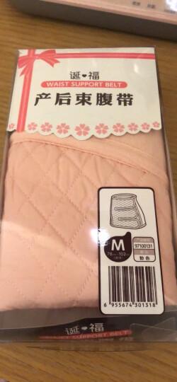三洋(dacco)产后收腹带顺产剖腹产通用束腹束腰带M号 晒单图