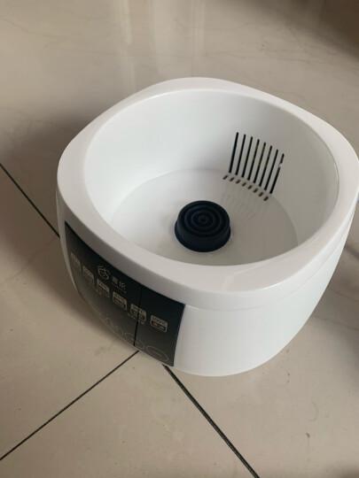 奢伦(solord) 恒温调奶器 多功能电热水壶暖奶温奶消毒养生冲奶器 601单壶身 晒单图
