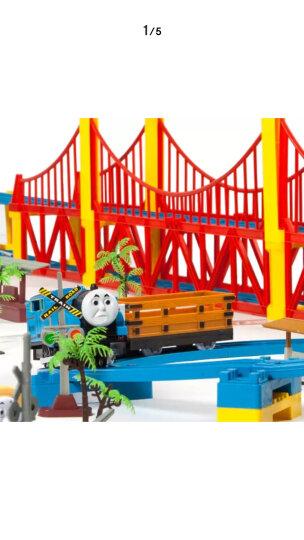 火车玩具小火车 轨道车玩具儿童电动玩具 大型礼盒装 和谐号组装男孩玩具3-6岁 119件套【4火车8车箱】 晒单图