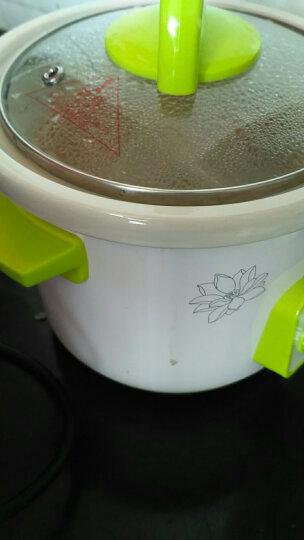格朗GL 婴儿BB煲粥锅宝宝电粥煲陶瓷智能预约BB煲 YY-16 晒单图