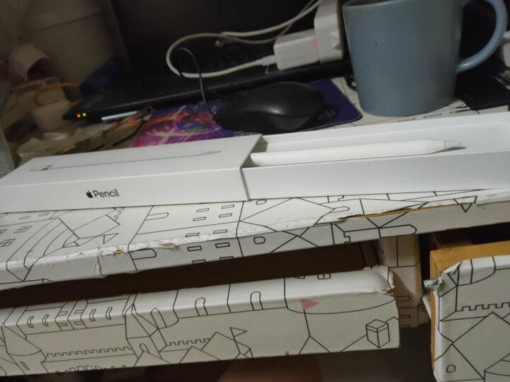 Apple Pencil 手写笔MK0C2CH(适用2018款9.7英寸iPad/2019款iPad Air/10.5英寸和2017款12.9英寸iPad Pro) 晒单图