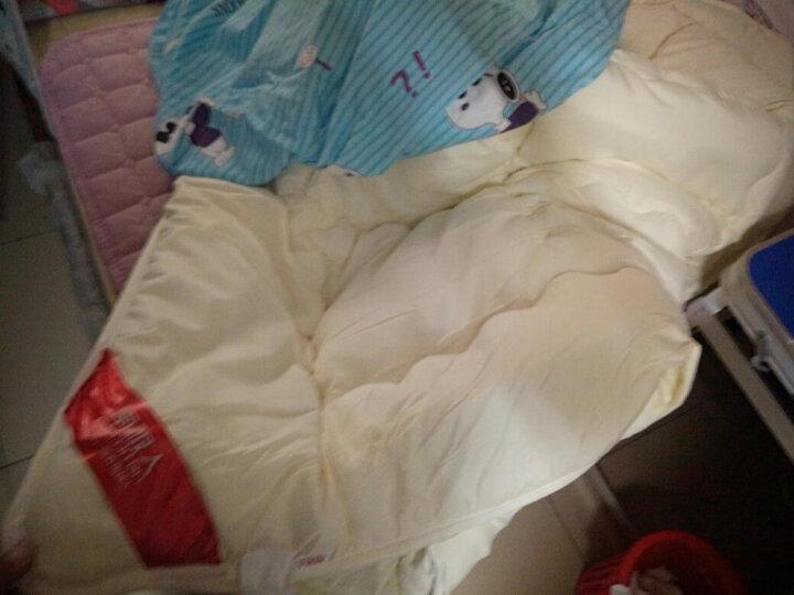 九洲鹿 加厚保暖双人被芯 梦莎拉蒂 6斤 200*230cm 秋冬被子棉被被芯家纺舒柔羽丝绒被盖被褥子 晒单图