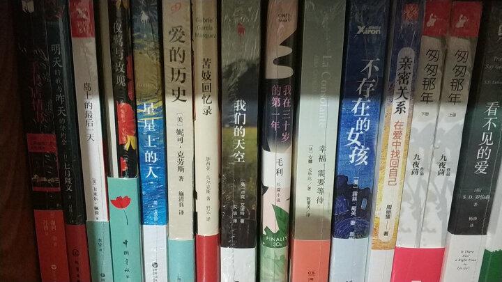 东野圭吾:梦幻花(费思良久的迷人之作,两种封面随机发货,内容完全一样) 晒单图