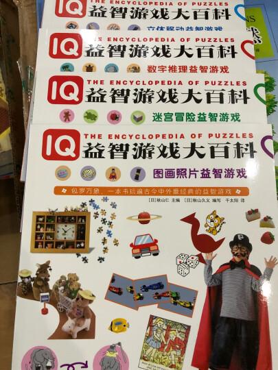 IQ益智游戏大百科:立体移动 迷宫冒险 平面拼图 数字推理 图画照片益智游戏(套装共5册) 晒单图