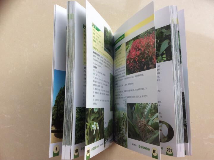 园林树木鉴赏(第二版) 晒单图