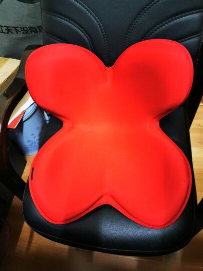 日本进口 MTG 美姿矫正坐垫 Body Make Seat Style坐垫矫正器 棕色经典款 臀围110cm 舒缓美臀 晒单图