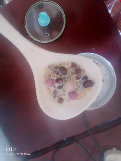 尚巧厨-展艺 烘焙原料 糖纳红小豆熟红豆蜜豆甜品刨冰奶茶红豆沙月饼馅500g 西米露罐头原料冰粉粉 晒单图