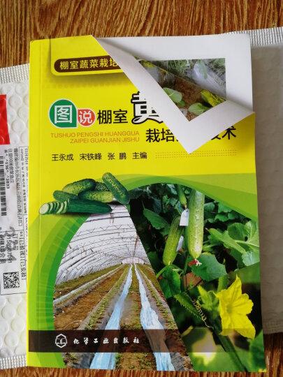 棚室蔬菜栽培图解丛书:图说棚室黄瓜栽培关键技术 晒单图