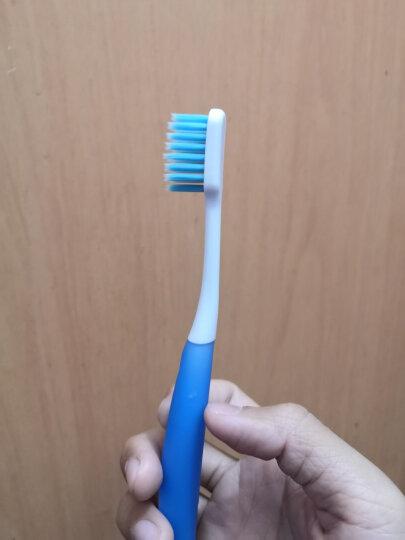 狮王(Lion)细齿洁靓龈牙刷*4支装 软毛牙刷 护理牙刷 细毛牙刷 洁净靓白牙齿 柔软护龈 包胶刷柄 握感舒适 晒单图