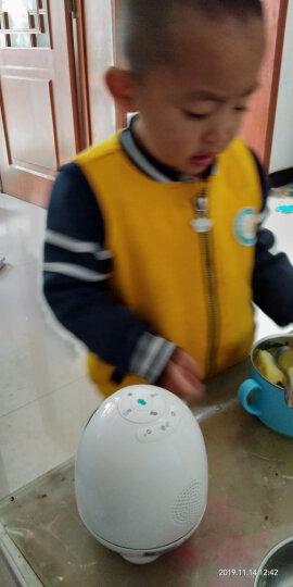 科大讯飞早教机 阿尔法蛋小蛋智能机器人 儿童玩具早教学习机器人故事机TYS1 白色 晒单图